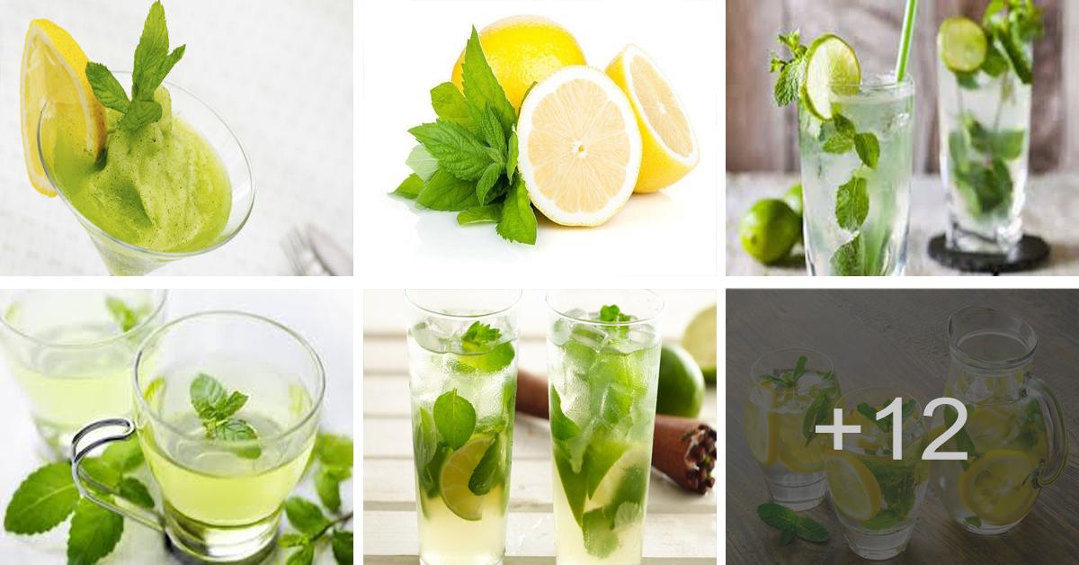 Increible como pierdes peso con menta y limón
